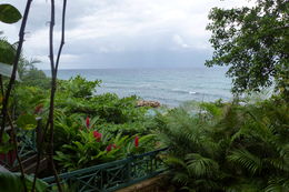 A beautiful view , Lynn H - February 2014