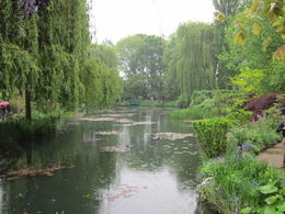 Monet's Water Garden at Giverny , Kathleen S. B - May 2011