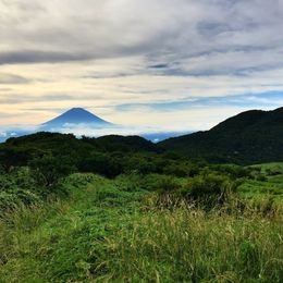 Fuji was cloudy when we took the bus up, but I captured this shot from the top of the gondola ride. , Marshall W - July 2016
