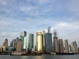 The Bund in Shanghai, Cat - March 2013
