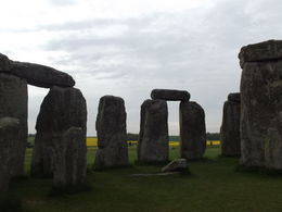 Taken within the Stones , David D - May 2012