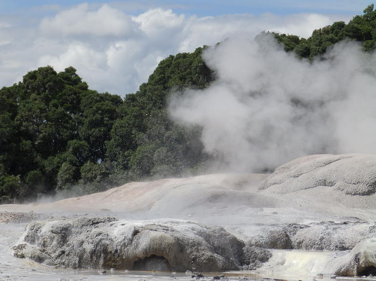 Rotorua Day Trip from Auckland with Options - Guaranteed departure