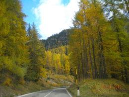 Dolomite , Nancy N - October 2013