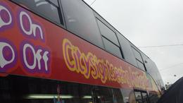Bus , ANDREA S - December 2014