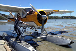 25-minute Golden Gate Seaplane Tour