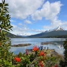 Tierra del Fuego National Park Hike and Canoe Tour, Ushuaia, ARGENTINA