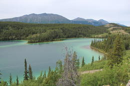 Emerald Lake. Just a little past Carcross. Gorgeous. , Walt M - August 2017