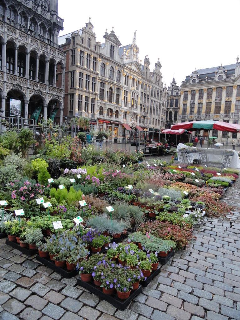 10.06.2012-01 Brussels Markt Square (4) - Brussels