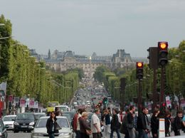 Looking at the main avenue from the Arc of Triomphe, Elwin S - September 2009
