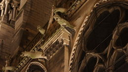 Gargoyles on the Cathedral. , wenll - November 2011