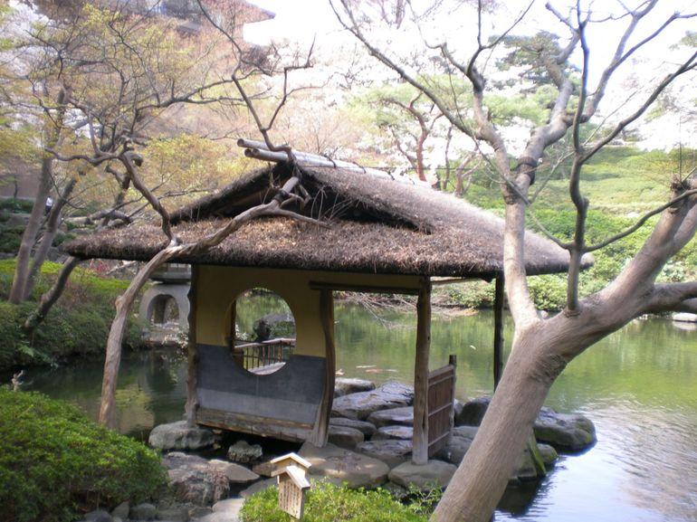 Garden outside tea ceremony - Tokyo