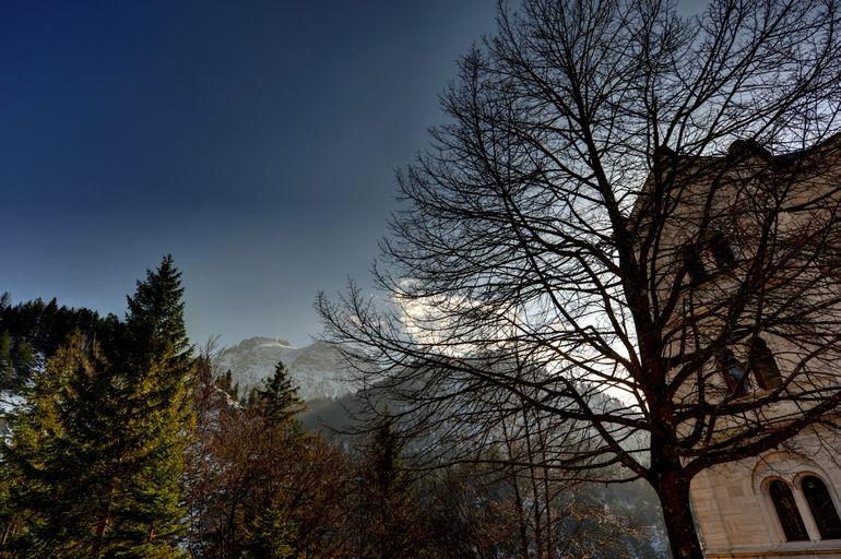Royal Castles of Neuschwanstein and Linderhof Day Tour - Munich