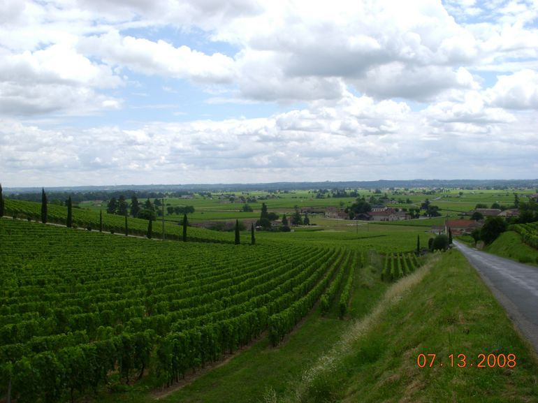 St. Emilion Valley - Bordeaux