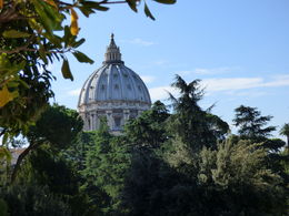 From the Vatican Gardens... , mcp322 - October 2015