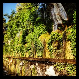 One of the amazing fountains at Villa d'Este , Staci C - July 2012