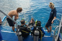 Instructive scuba dive., Jialin L - January 2009