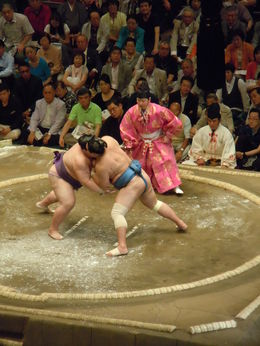 One of the Sumo matches. , Timothy N - May 2015