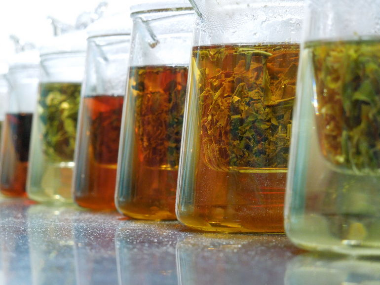 tea tasting.JPG - New Delhi