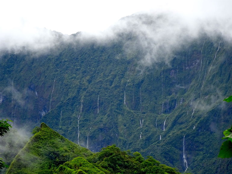 Moorea Three Coconuts Trail Guided Hike photo 12