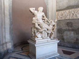 Laocoön in the Pio Clementino section of the museum , Alan P - January 2017
