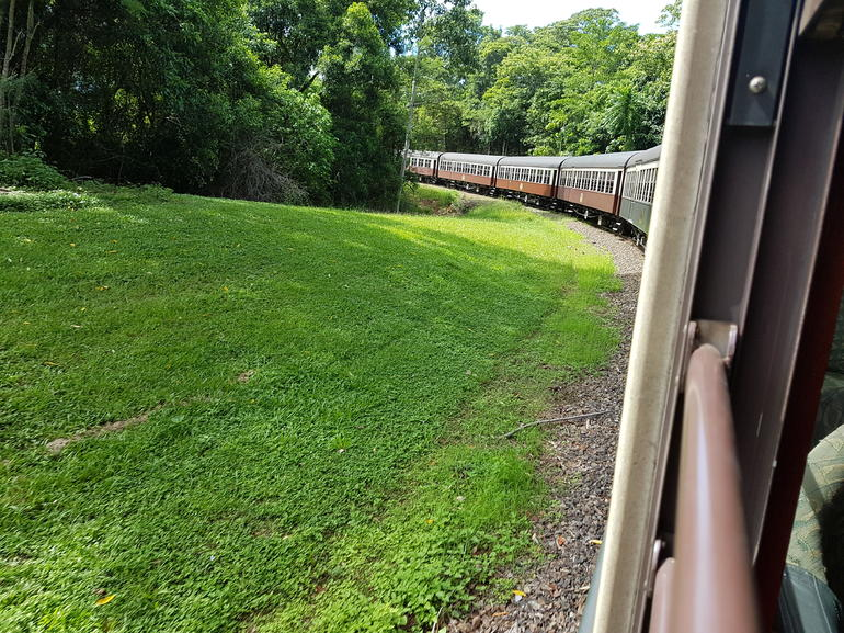 Skip the Line: Kuranda Scenic Railway Gold Class and Skyrail Rainforest Cableway photo 14