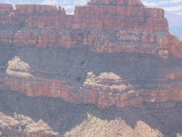 Somewhere on the West Rim of the Grand Canyon. - June 2010