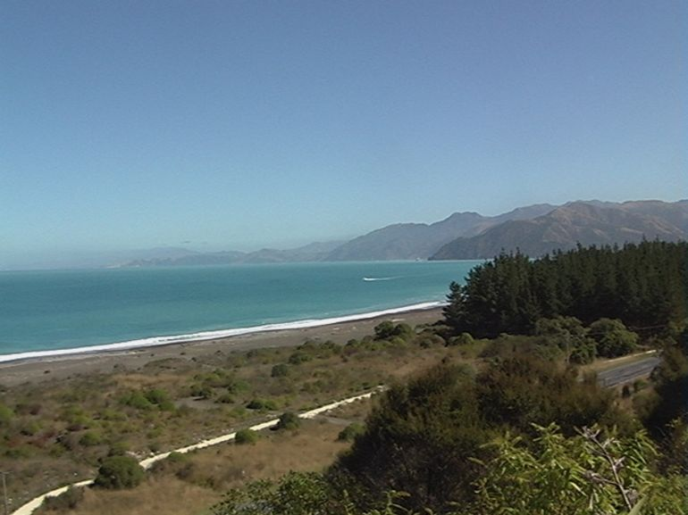 kaikoura Bay - Christchurch