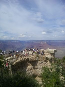 Look at the people admiring the Grand Canyon - August 2013