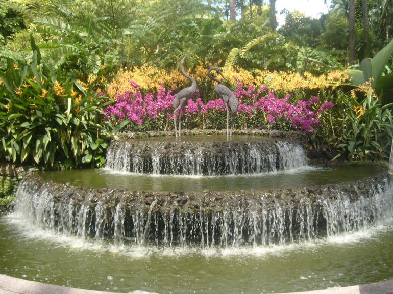 The Botanical Gardens in Singapore - Singapore