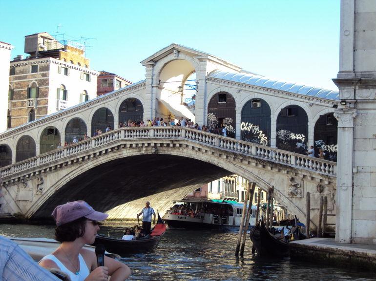 The Rialto Bridge from our Tour Boat - Venice