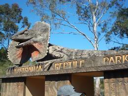 Australian Reptile Park , Ericka M - November 2016