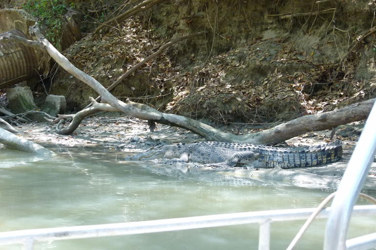 Kakadu Full-Day Tour from Darwin with Lunch