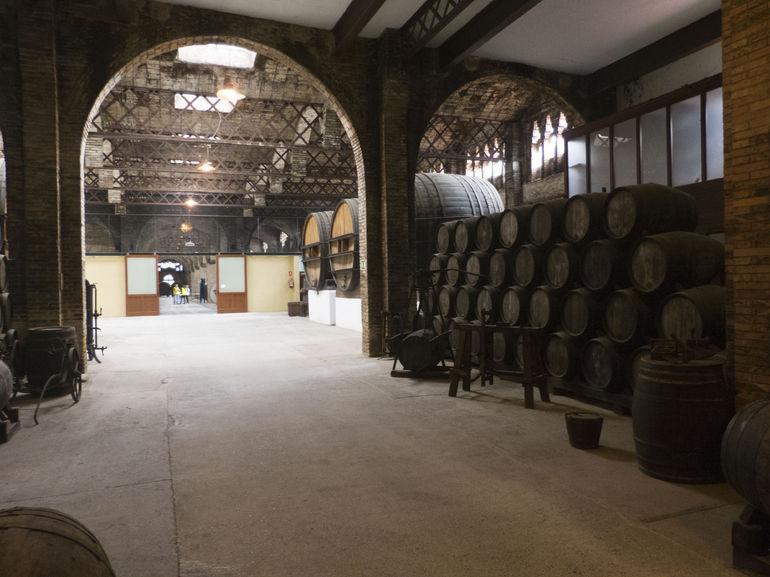Codorníu Winery - Barcelona