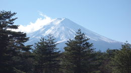 Mt Fuji , michael p - January 2014
