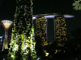 Close up of the Super Trees with the Marina Bay Sands in the background, Leah - November 2012