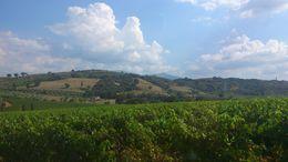 Beautiful tuscan village. Italy , rajat - September 2013