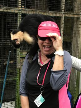 Debbi Meeting one of the monkeys on site. , Debbi P - February 2018