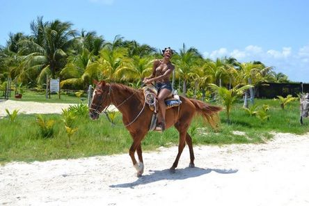 Cozumel Tours By Horse