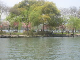 Early spring on West Lake in Hangzhou with peach and plum trees in bloom. , Robin W - May 2011