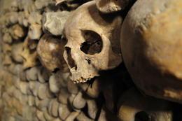one of the six million skulls , Lord Sebastian - January 2015