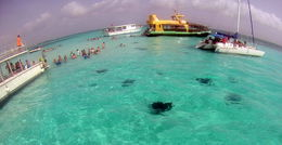 Stingray city , kmfink@gmail.com - July 2015