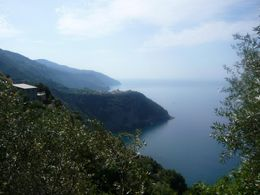 on the trail from Vernazza to Corniglia, AlexB - July 2012