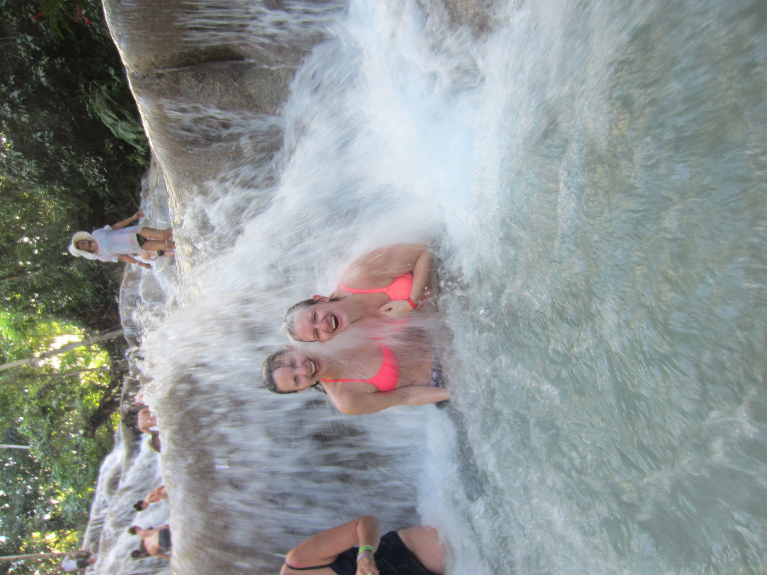 MAIS FOTOS, Dunn's River Falls & Luminous Lagoon Guided Tour from Montego Bay