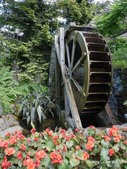 Waterwheel , Henry C - July 2014