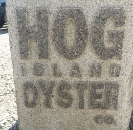 Hog Island Oyster Co., in Point Reyes Station, Emily G - April 2015