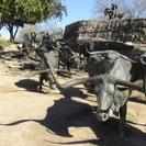 Sightseeing Tour of Dallas, Dallas, TX, ESTADOS UNIDOS