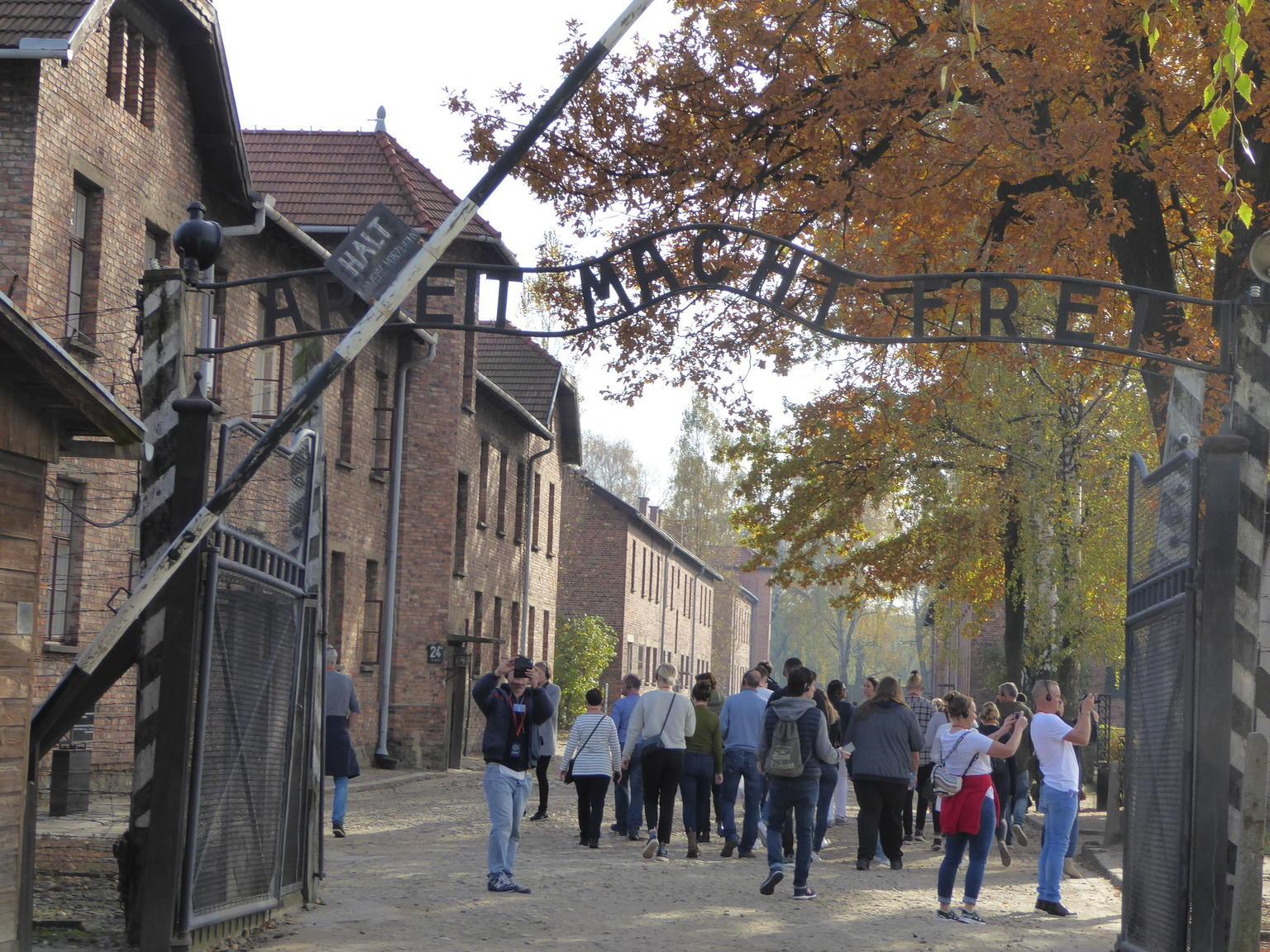 MÁS FOTOS, Excursión de día completo a Auschwitz-Birkenau y a la mina de sal de Wieliczka desde Cracovia con almuerzo incluido