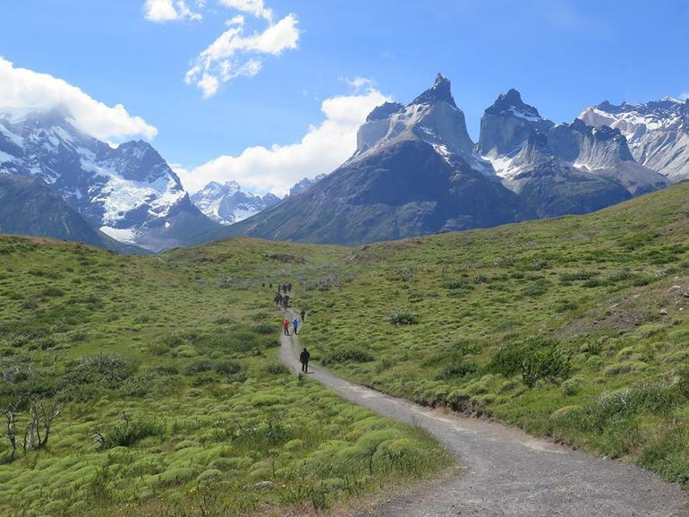 Full-Day Tour to the Torres del Paine National Park photo 22