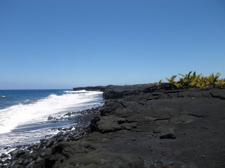 IMGP2911 - Oahu