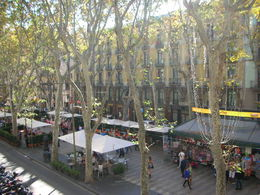 A general shot of La Rambla during the day. , Susan L - November 2013